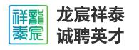 江苏龙宸祥泰海绵城市建设工程有限公司